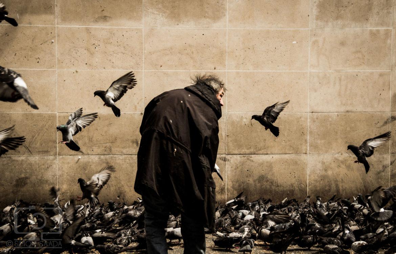 Street Life (Coming Soon)